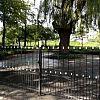 Gemeenteraad buigt zich over nieuw begraafplaatsenbeleid