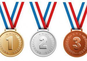 Tweemaal goud en een bronzen plak bij ZVS