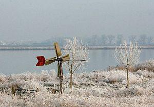 Winterwandeling met wild op Tiengemeten