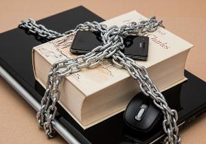 Samenwerkingsverband Cybernetwerk Zuid-Hollandse Eilanden ontvangt subsidie