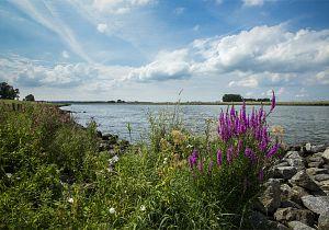 Op weg naar een klimaatneutrale Hoeksche Waard met vastgestelde uitvoeringsprogramma's duurzaamheid