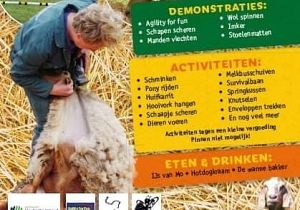 Jaarlijks schapenscheerdersfeest